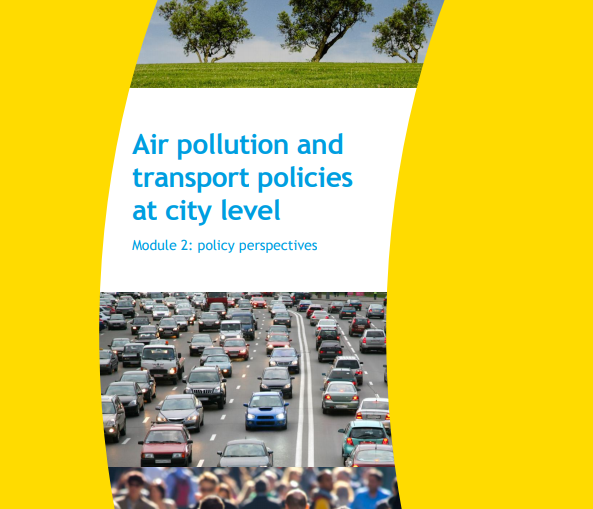 Impacts of transport-related policy measures on air quality